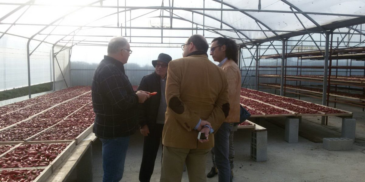 Visita a DOP Pimentón Espelette